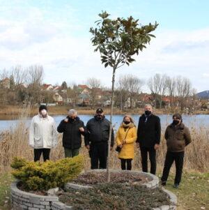 Szépen fejlődik Pilisszentivánon a Polgárőrség Fája